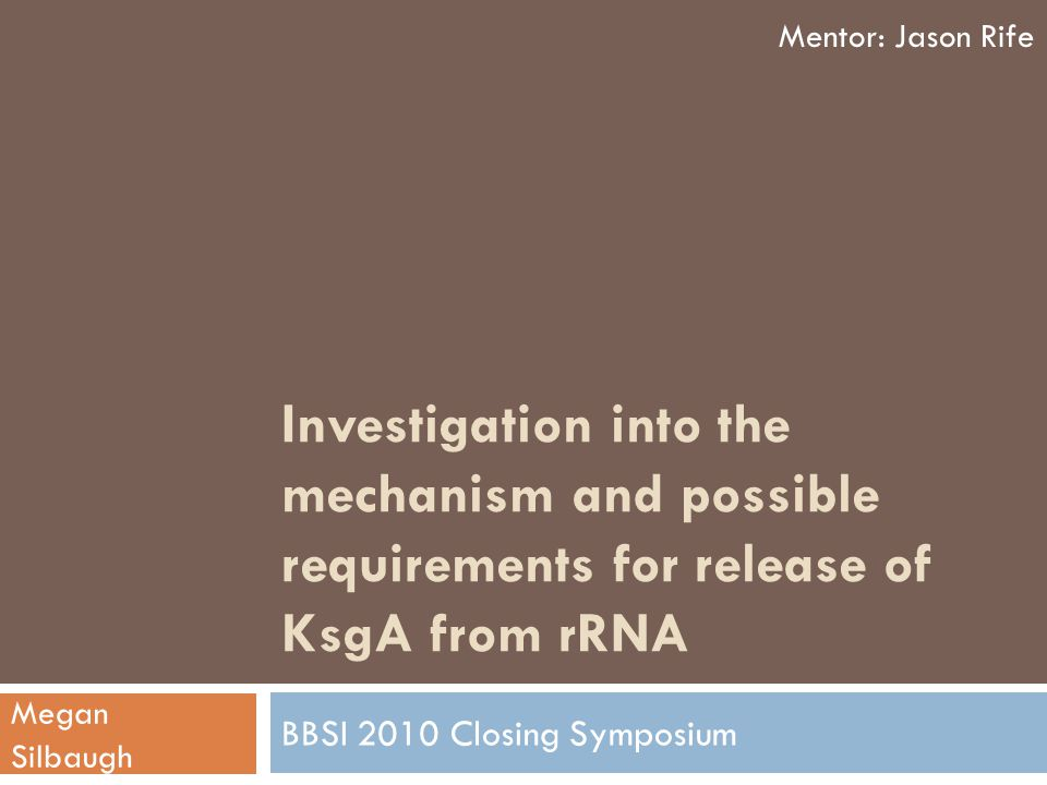 Investigation into the mechanism and possible requirements for release of KsgA from rRNA BBSI 2010 Closing Symposium Mentor: Jason Rife Megan Silbaugh