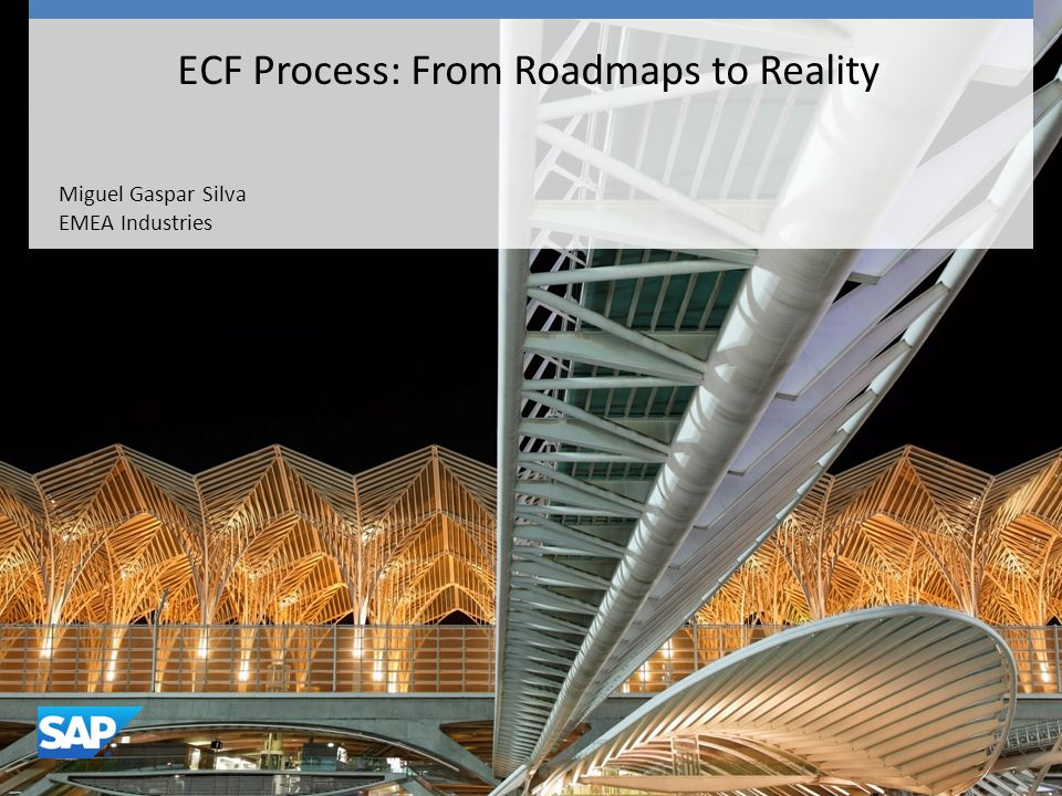Miguel Gaspar Silva EMEA Industries ECF Process: From Roadmaps to Reality