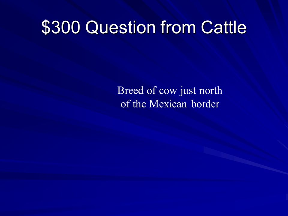 $200 Answer from Cattle Vaquero