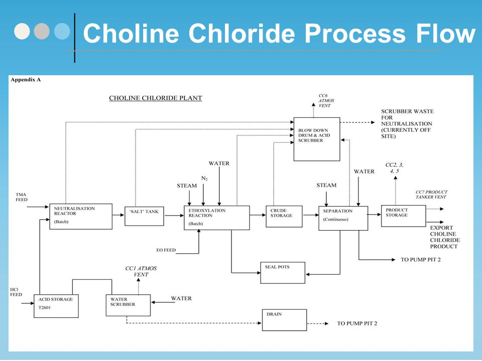Choline Chloride Process Flow