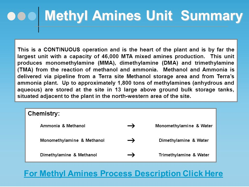 Methyl Amines Unit Summary This is a CONTINUOUS operation and is the heart of the plant and is by far the largest unit with a capacity of 46,000 MTA mixed amines production.