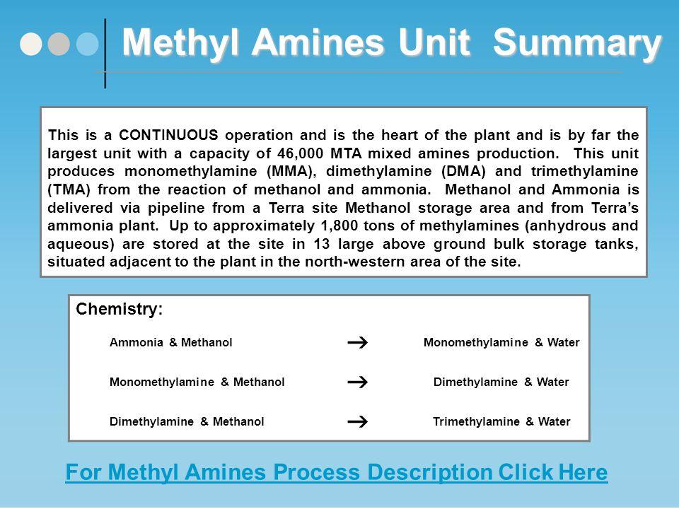 Methyl Amines Unit Process Flow