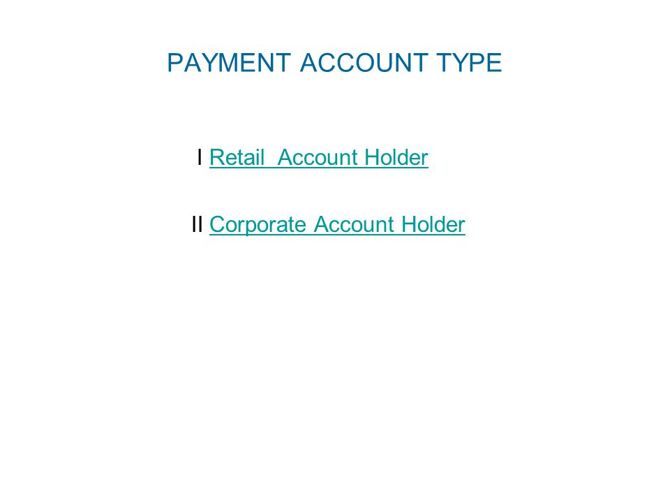 PAYMENT ACCOUNT TYPE I Retail Account HolderRetail Account Holder II Corporate Account HolderCorporate Account Holder