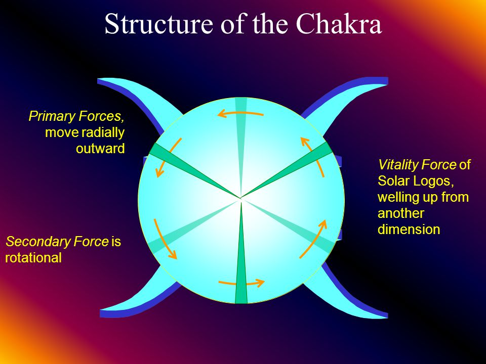 Working of the Chakra To Throat Chakra To Root Chakra To Heart Chakra To Navel Chakra and Abdomen To entire Nervous system