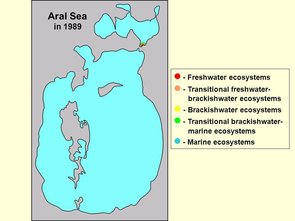 Aral Sea in 1989 - Freshwater ecosystems - Transitional freshwater- brackishwater ecosystems - Brackishwater ecosystems - Transitional brackishwater-