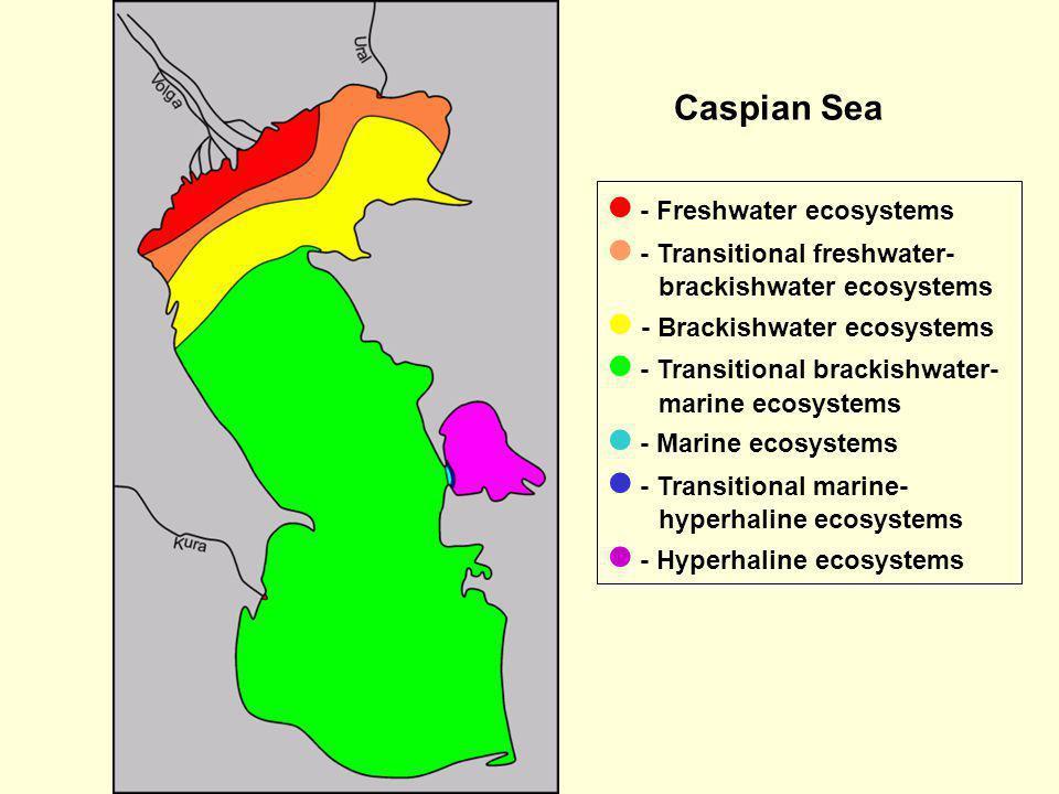 - Freshwater ecosystems - Transitional freshwater- brackishwater ecosystems - Brackishwater ecosystems - Transitional brackishwater- marine ecosystems
