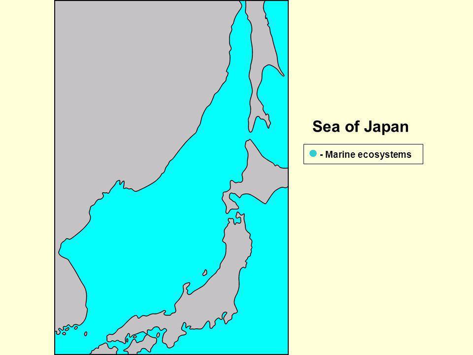 Sea of Japan - Marine ecosystems