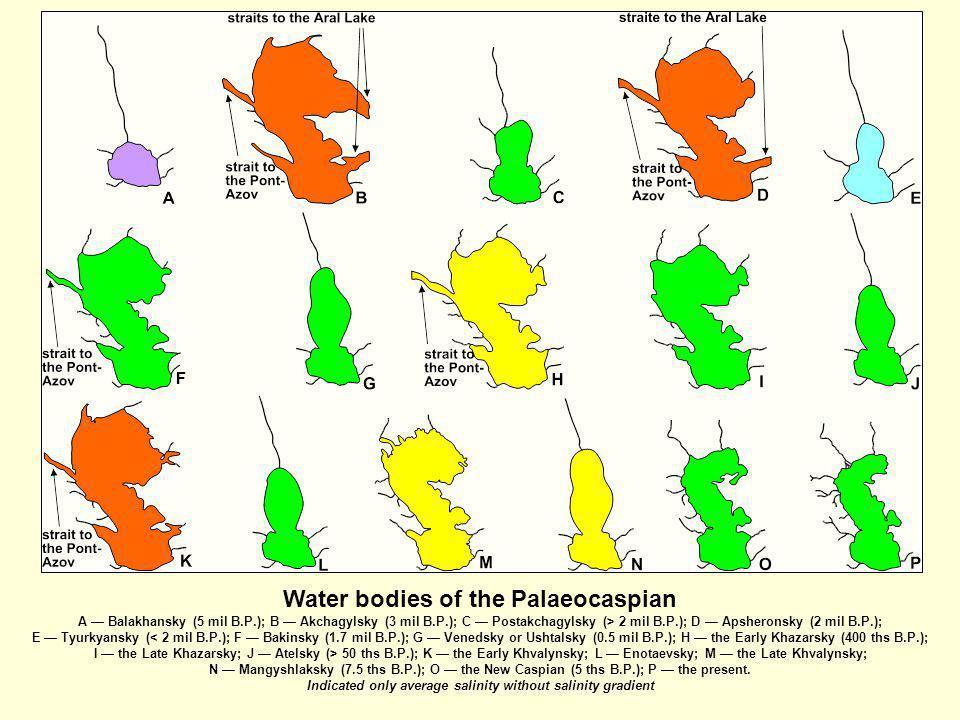 Water bodies of the Palaeocaspian A Balakhansky (5 mil B.P.); B Akchagylsky (3 mil B.P.); C Postakchagylsky (> 2 mil B.P.); D Apsheronsky (2 mil B.P.)