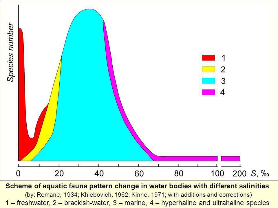 Scheme of aquatic fauna pattern change in water bodies with different salinities (by: Remane, 1934; Khlebovich, 1962; Kinne, 1971; with additions and