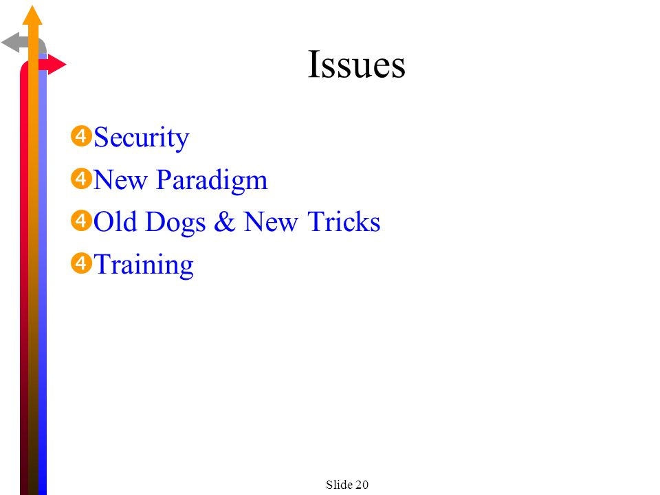 Slide 20 Issues Security New Paradigm Old Dogs & New Tricks Training
