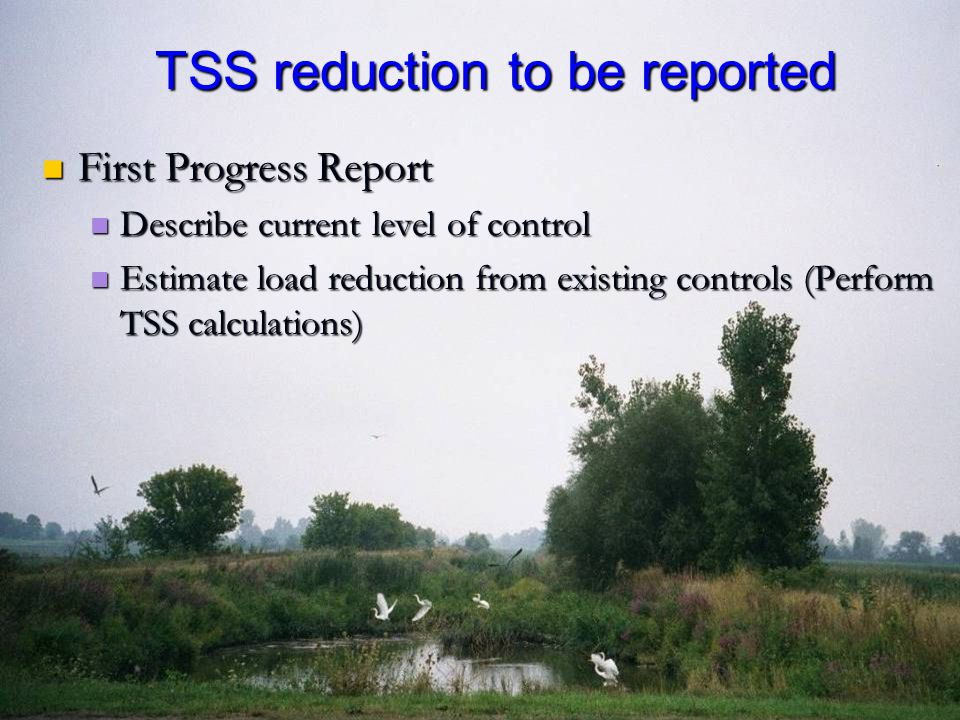 First Progress Report First Progress Report Describe current level of control Describe current level of control Estimate load reduction from existing controls (Perform TSS calculations) Estimate load reduction from existing controls (Perform TSS calculations) TSS reduction to be reported