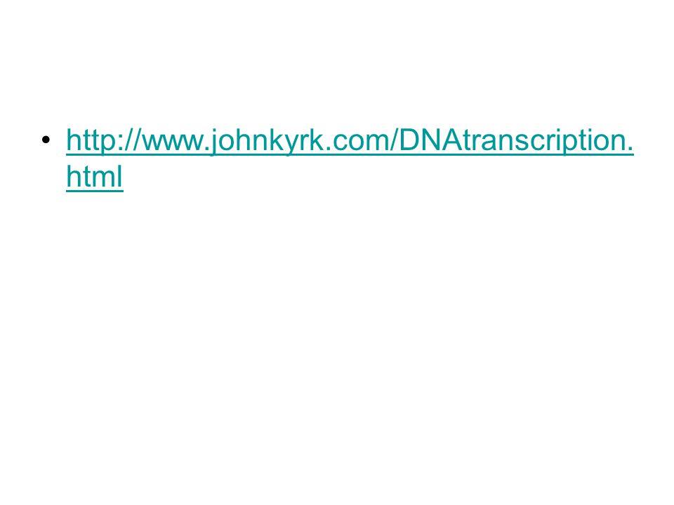 http://www.johnkyrk.com/DNAtranscription. htmlhttp://www.johnkyrk.com/DNAtranscription. html