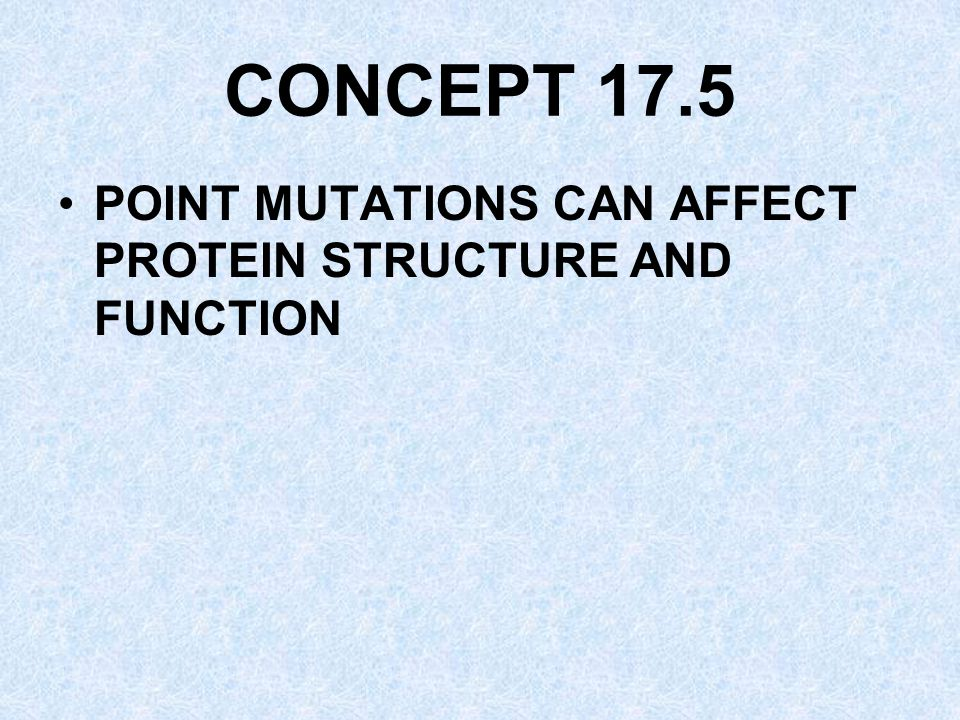CONCEPT 17.5 POINT MUTATIONS CAN AFFECT PROTEIN STRUCTURE AND FUNCTION