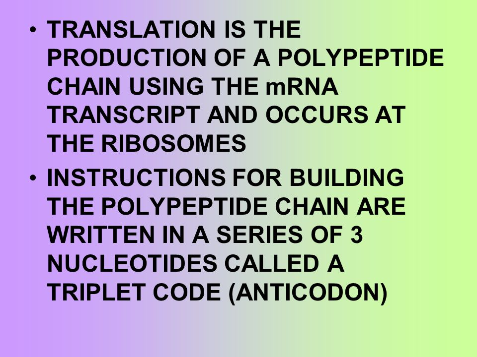 TERMINATION – A STOP CODON IN THE mRNA IS REACHED AND TRANSLATION STOPS A PROTEIN CALLED RELEASE FACTOR BINDS TO STOP CODON AND THE POLYPEPTIDE IS FREED FROM THE RIBOSOME POLYPEPTIDES FOLD TO ASSUME THEIR SPECIFIC CONFORMATION