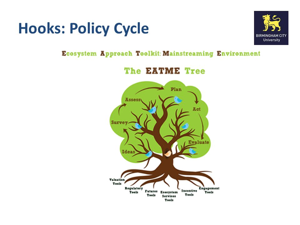 Hooks: Policy Cycle