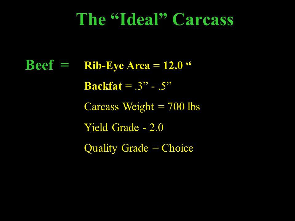 The Ideal Carcass Beef = Rib-Eye Area = 12.0 Backfat =.3 -.5 Carcass Weight = 700 lbs Yield Grade - 2.0 Quality Grade = Choice