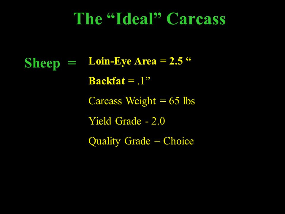 The Ideal Carcass Sheep = Loin-Eye Area = 2.5 Backfat =.1 Carcass Weight = 65 lbs Yield Grade - 2.0 Quality Grade = Choice