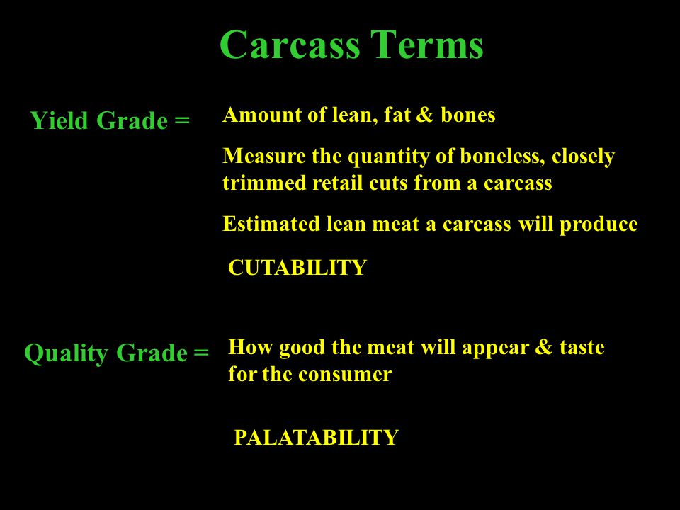Carcass Terms Yield Grade = Amount of lean, fat & bones Measure the quantity of boneless, closely trimmed retail cuts from a carcass Estimated lean me