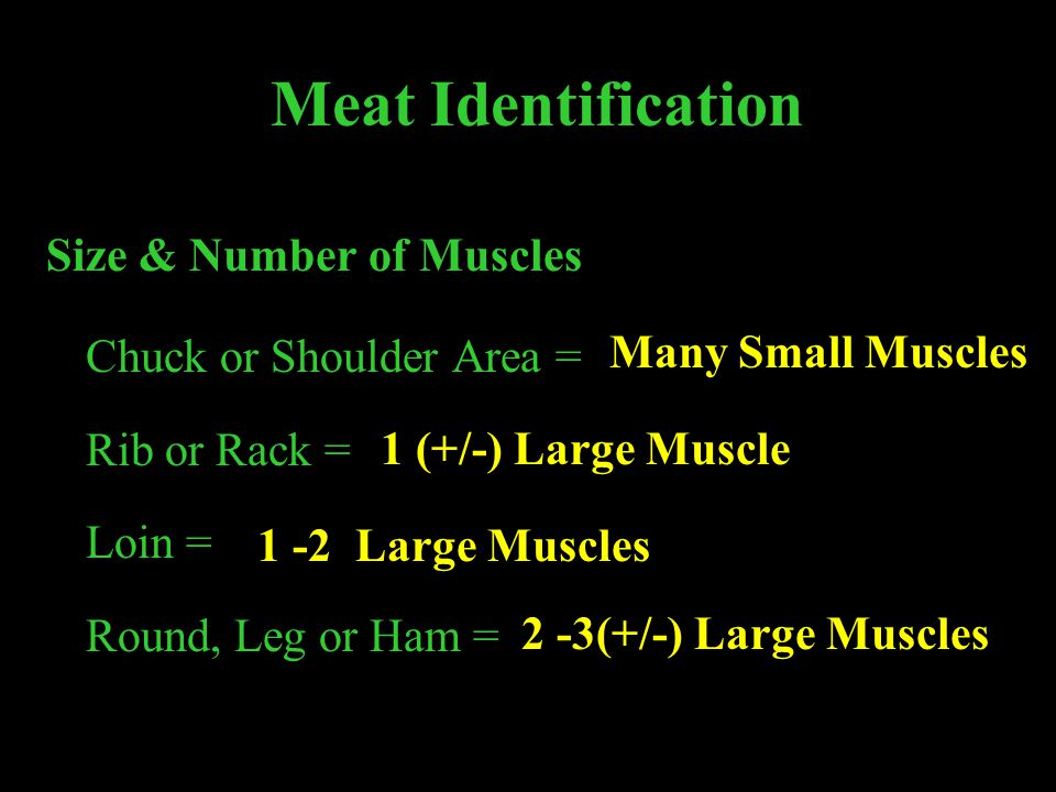 Meat Identification Size & Number of Muscles Chuck or Shoulder Area = Rib or Rack = Loin = Round, Leg or Ham = Many Small Muscles 1 (+/-) Large Muscle