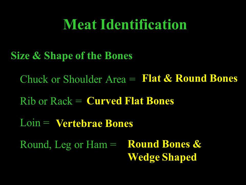 Meat Identification Size & Shape of the Bones Chuck or Shoulder Area = Rib or Rack = Loin = Round, Leg or Ham = Flat & Round Bones Curved Flat Bones V