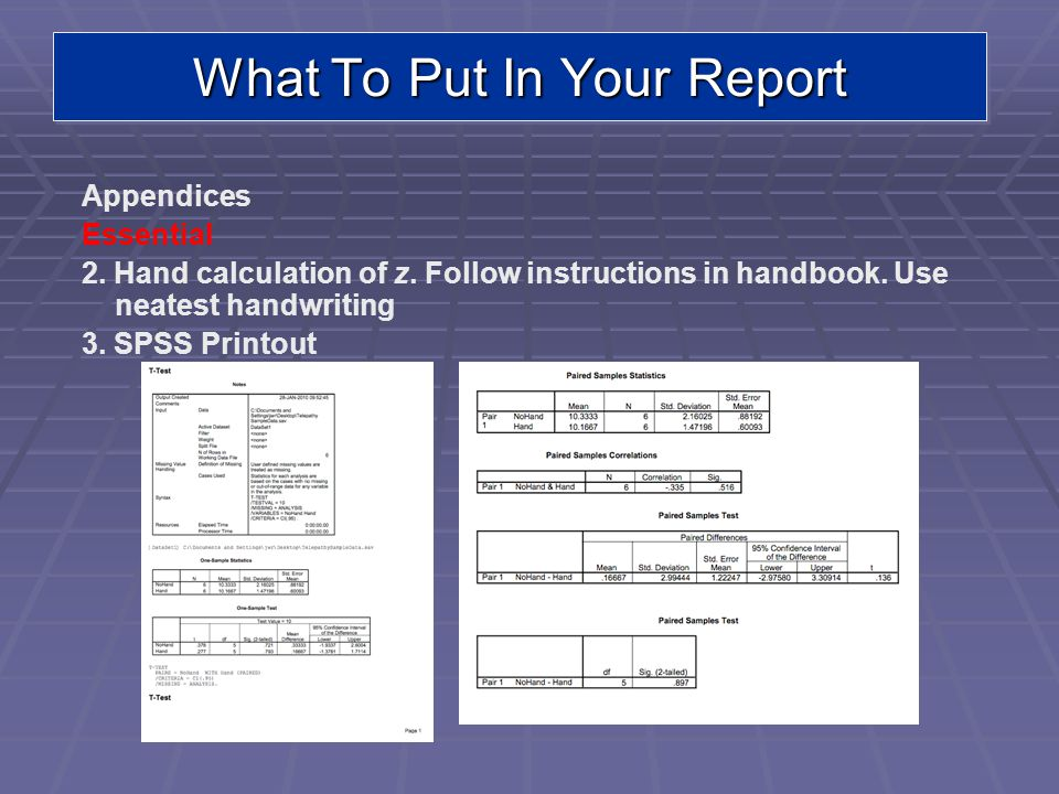 What To Put In Your Report Appendices Essential 2.