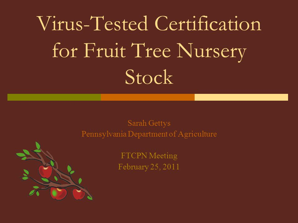 Virus-Tested Certification for Fruit Tree Nursery Stock Sarah Gettys Pennsylvania Department of Agriculture FTCPN Meeting February 25, 2011