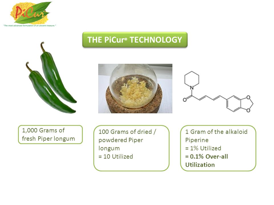 1,000 Grams of fresh Piper longum 100 Grams of dried / powdered Piper longum = 10 Utilized 1 Gram of the alkaloid Piperine = 1% Utilized = 0.1% Over-all Utilization THE PiCur ® TECHNOLOGY