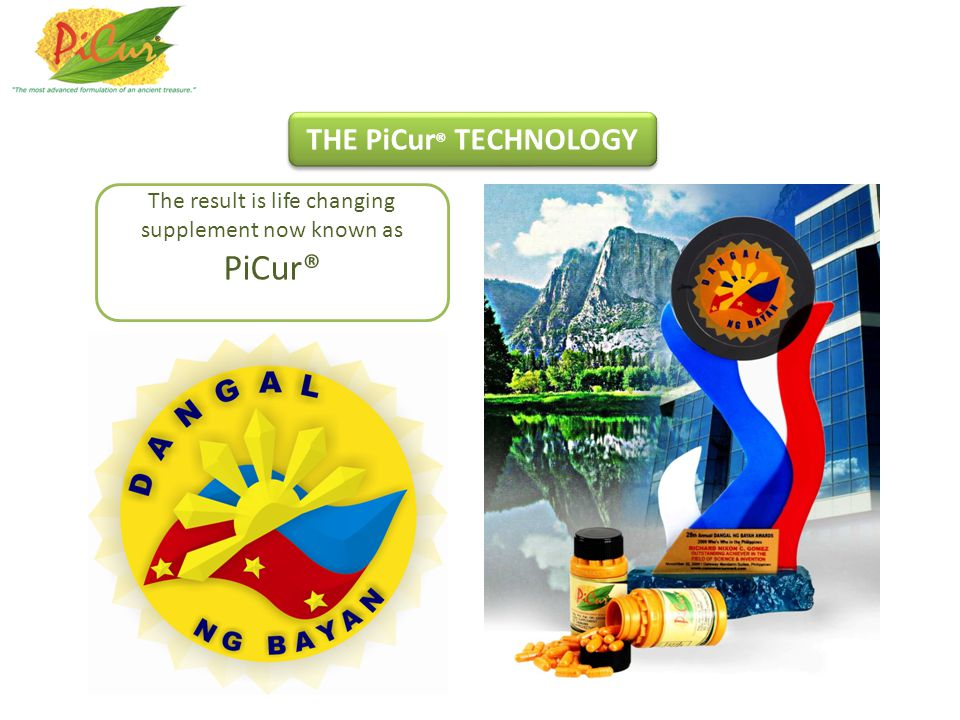 The result is life changing supplement now known as PiCur® THE PiCur ® TECHNOLOGY
