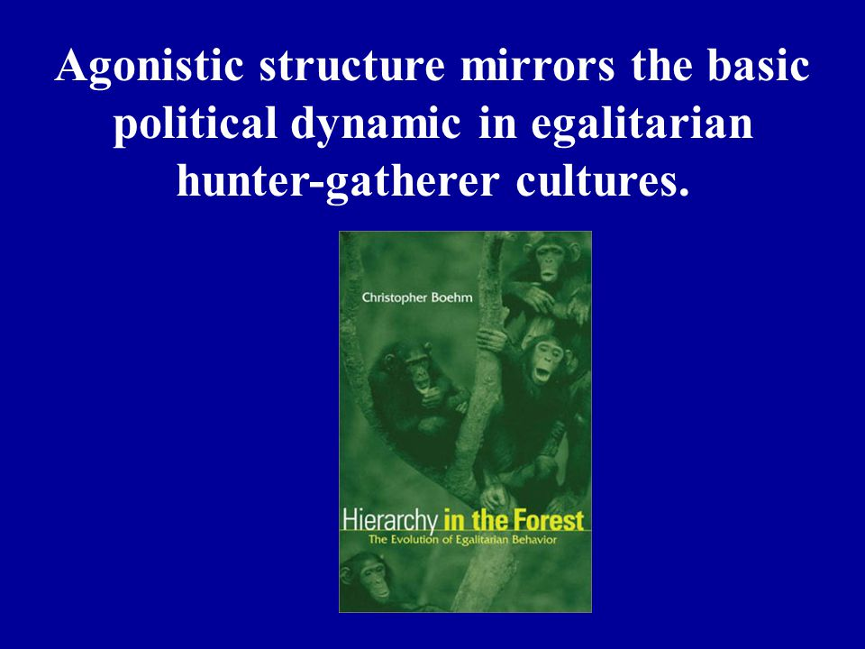 Agonistic structure mirrors the basic political dynamic in egalitarian hunter-gatherer cultures.