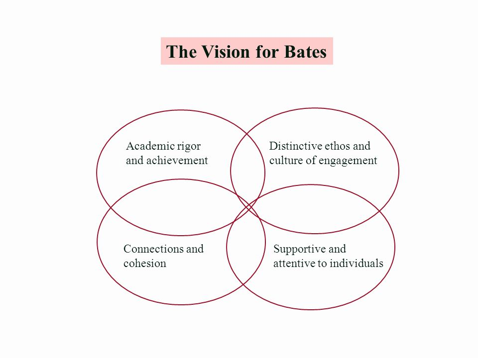 The Vision for Bates Distinctive ethos and culture of engagement Supportive and attentive to individuals Connections and cohesion Academic rigor and achievement