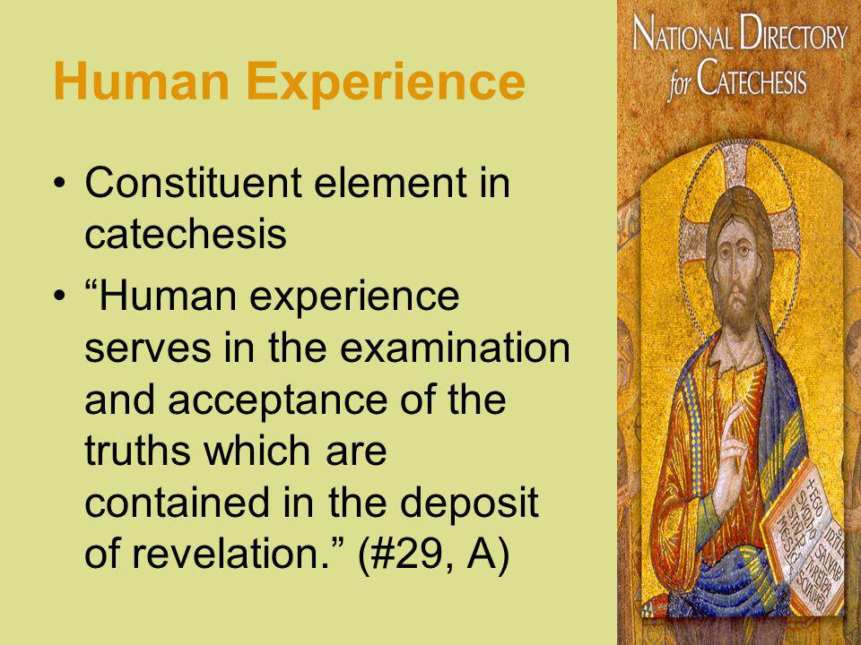 Human Experience Constituent element in catechesis Human experience serves in the examination and acceptance of the truths which are contained in the deposit of revelation.
