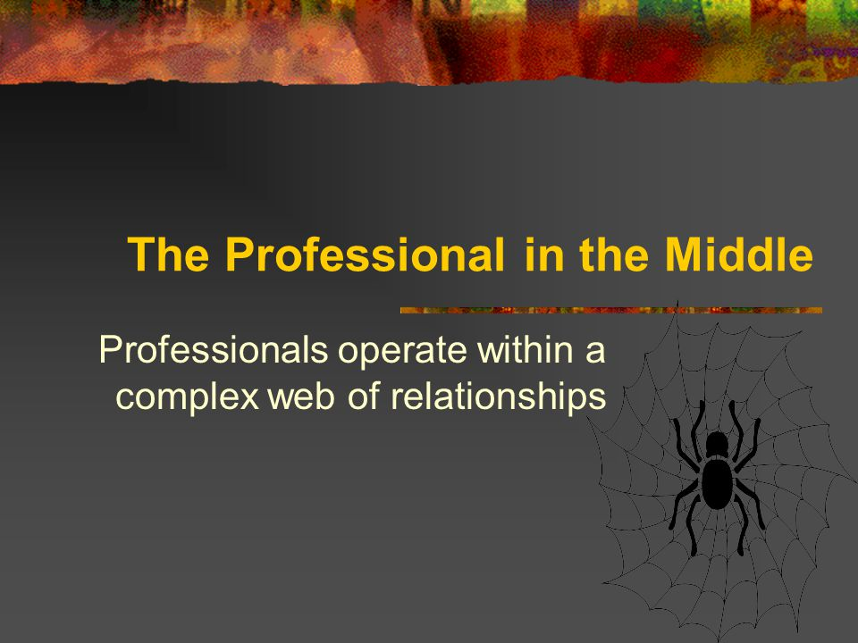 The Professional in the Middle Professionals operate within a complex web of relationships