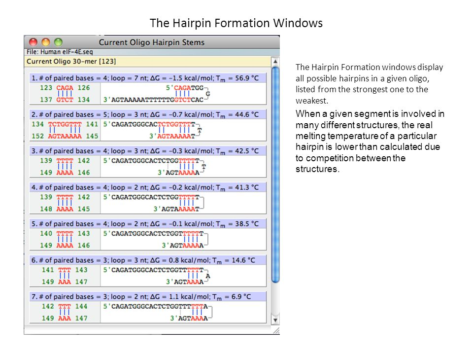 The Hairpin Formation Windows The Hairpin Formation windows display all possible hairpins in a given oligo, listed from the strongest one to the weake