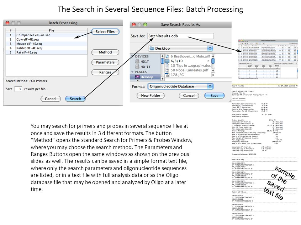 The Search in Several Sequence Files: Batch Processing You may search for primers and probes in several sequence files at once and save the results in