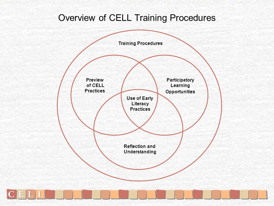 Overview of CELL Training Procedures Preview of CELL Practices Participatory Learning Opportunities Reflection and Understanding Use of Early Literacy Practices Training Procedures