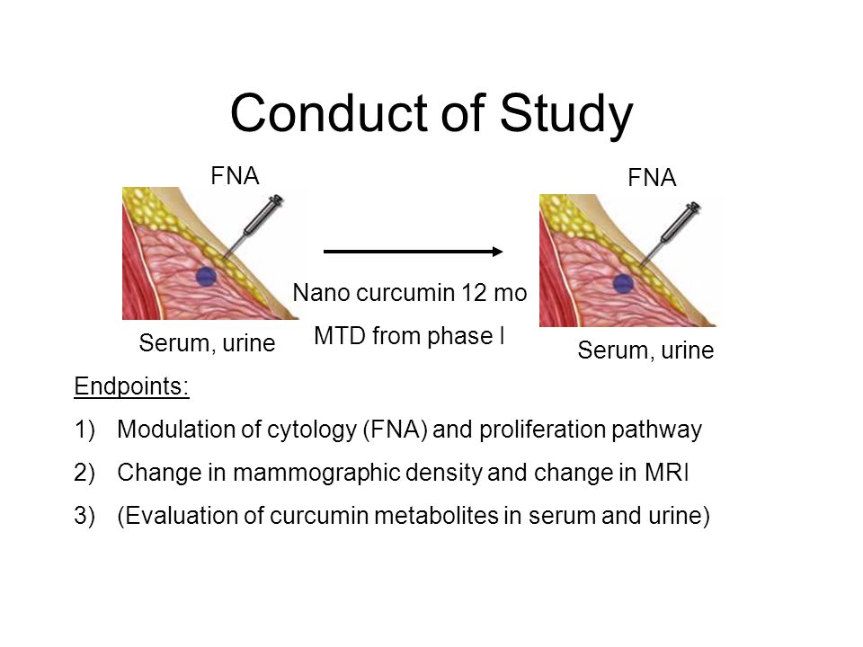 Conduct of Study Nano curcumin 12 mo MTD from phase I Endpoints: 1)Modulation of cytology (FNA) and proliferation pathway 2)Change in mammographic den