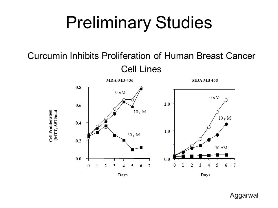 Preliminary Studies Curcumin Inhibits Proliferation of Human Breast Cancer Cell Lines Cell Proliferation (MTT, A570nm) 76543210 0.0 0.2 0.4 0.6 0.8 MD