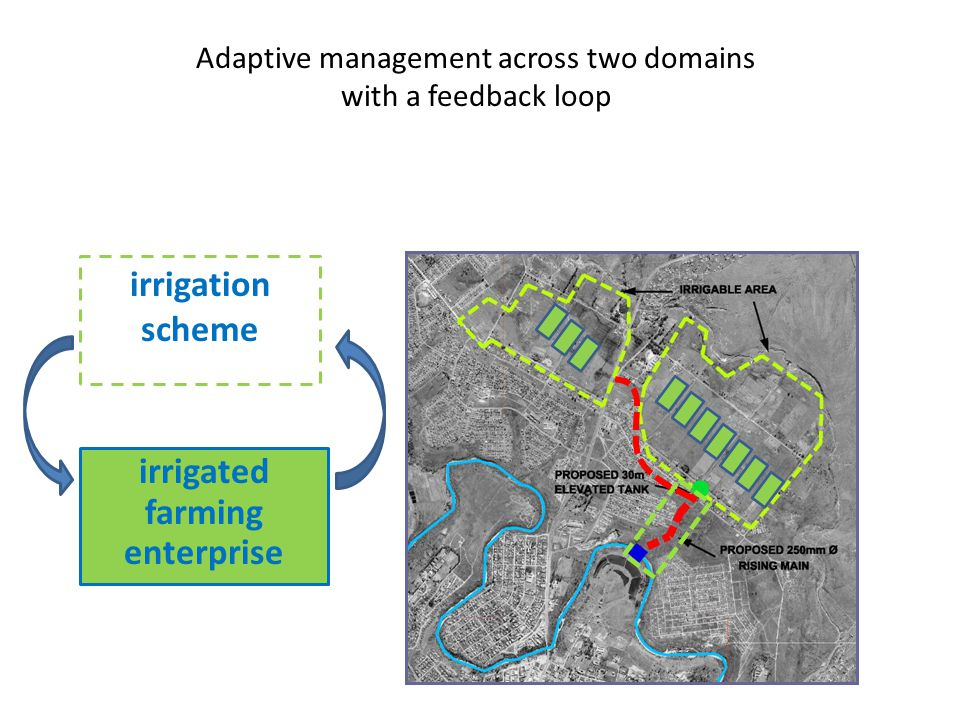 Adaptive management across two domains with a feedback loop irrigation scheme irrigated farming enterprise