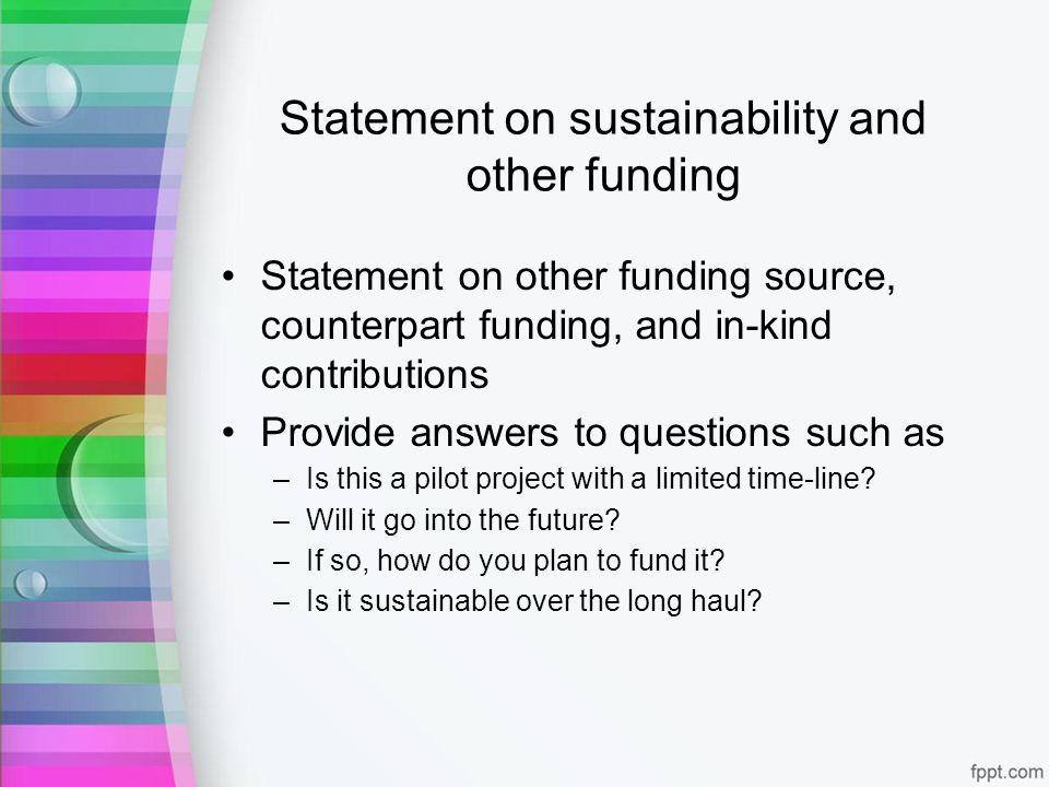 Statement on sustainability and other funding Statement on other funding source, counterpart funding, and in-kind contributions Provide answers to questions such as –Is this a pilot project with a limited time-line.