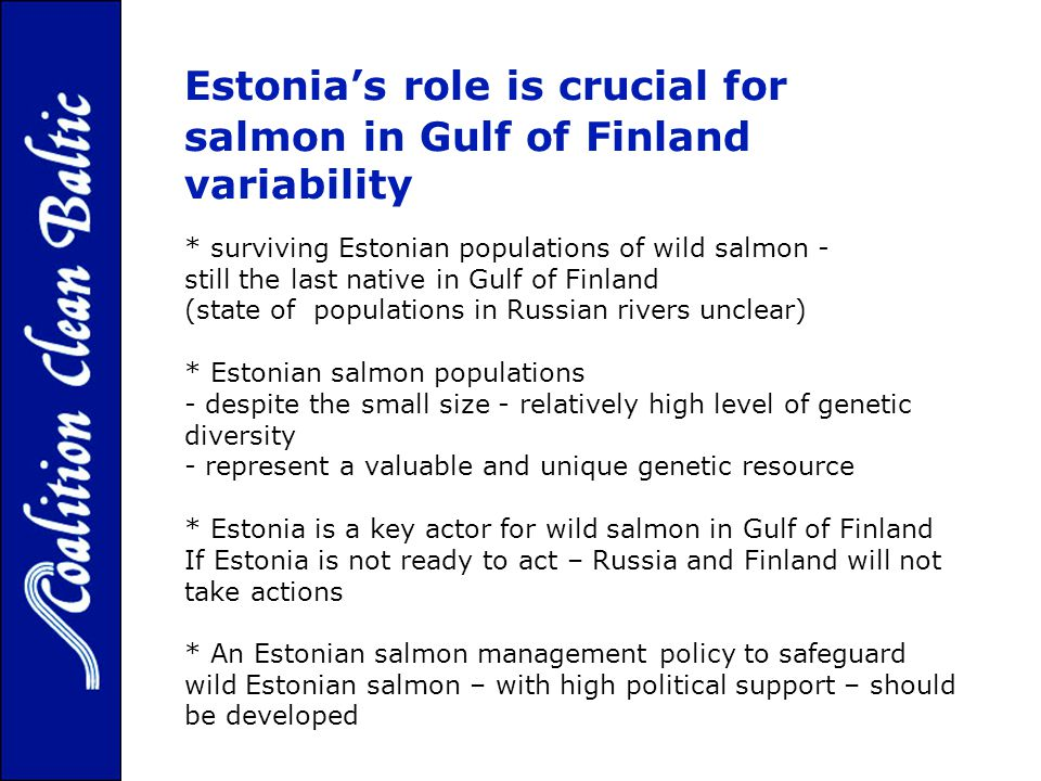 Estonias role is crucial for wild salmon in Gulf of Finland variability of the wild Baltic salmon. * surviving Estonian populations of wild salmon - s