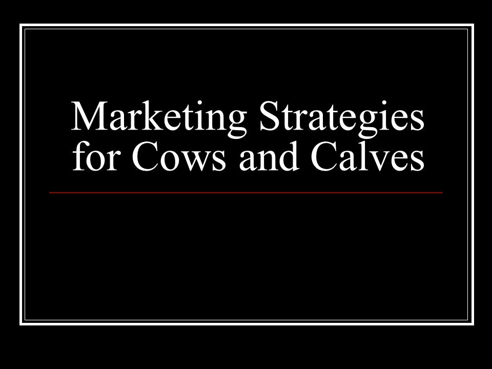 Marketing Strategies for Cows and Calves