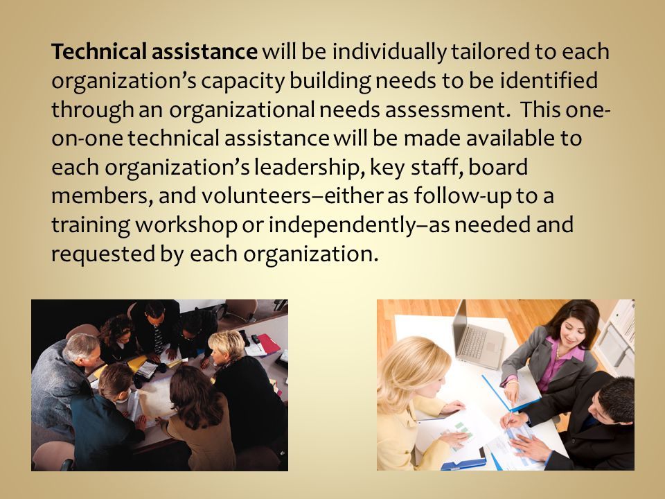 Technical assistance will be individually tailored to each organizations capacity building needs to be identified through an organizational needs assessment.