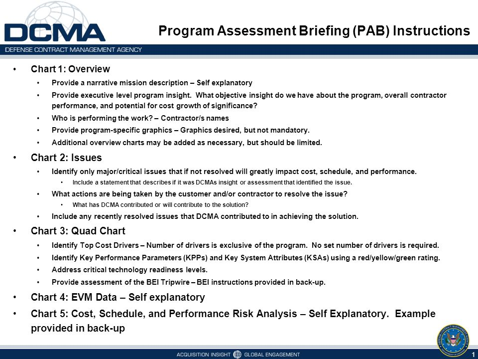 Program Assessment Briefing (PAB) Instructions Chart 1: Overview Provide a narrative mission description – Self explanatory Provide executive level program insight.