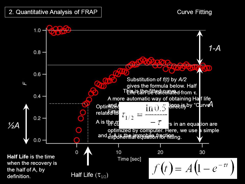 Curve Fitting A 1-A Half Life ½A 2. Quantitative Analysis of FRAP A more automatic way of obtaining Half life and mobile/immobile fractions is by Curv