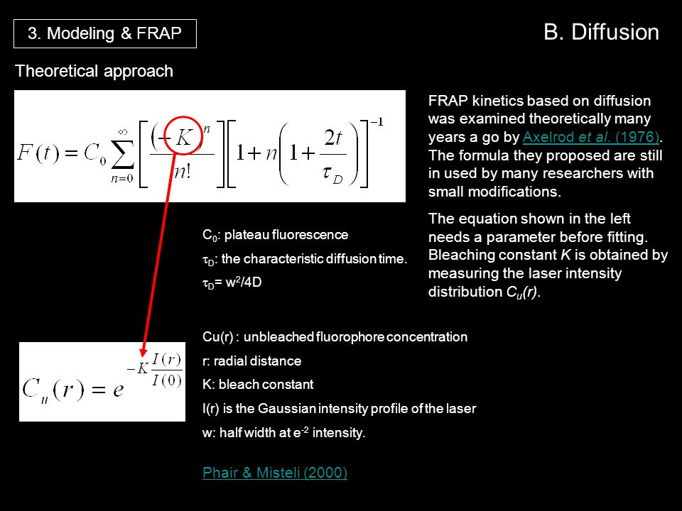 B. Diffusion Theoretical approach Phair & Misteli (2000) Cu(r) : unbleached fluorophore concentration r: radial distance K: bleach constant I(r) is th
