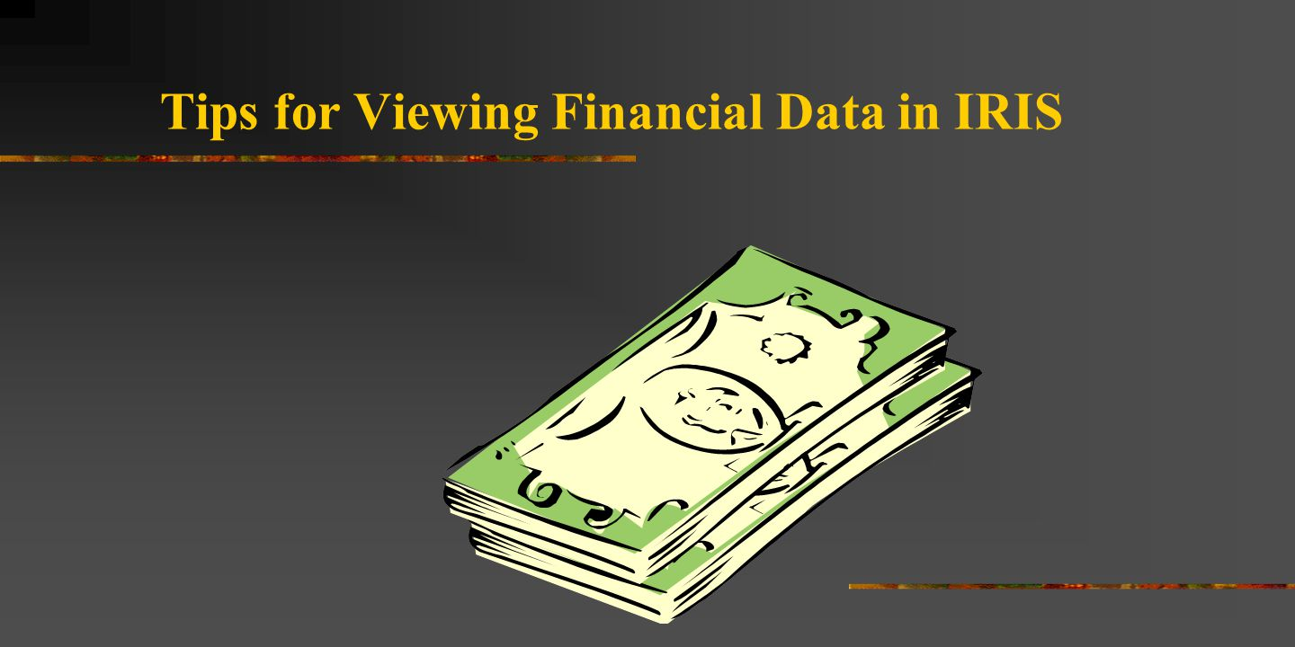 Tips for Viewing Financial Data in IRIS