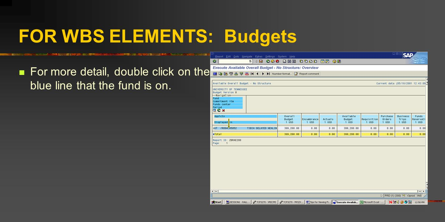 FOR WBS ELEMENTS: Budgets For more detail, double click on the blue line that the fund is on.