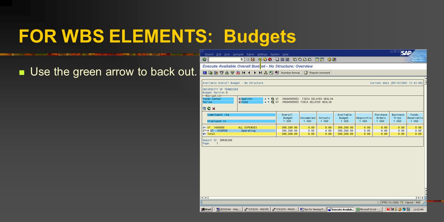 FOR WBS ELEMENTS: Budgets Use the green arrow to back out.