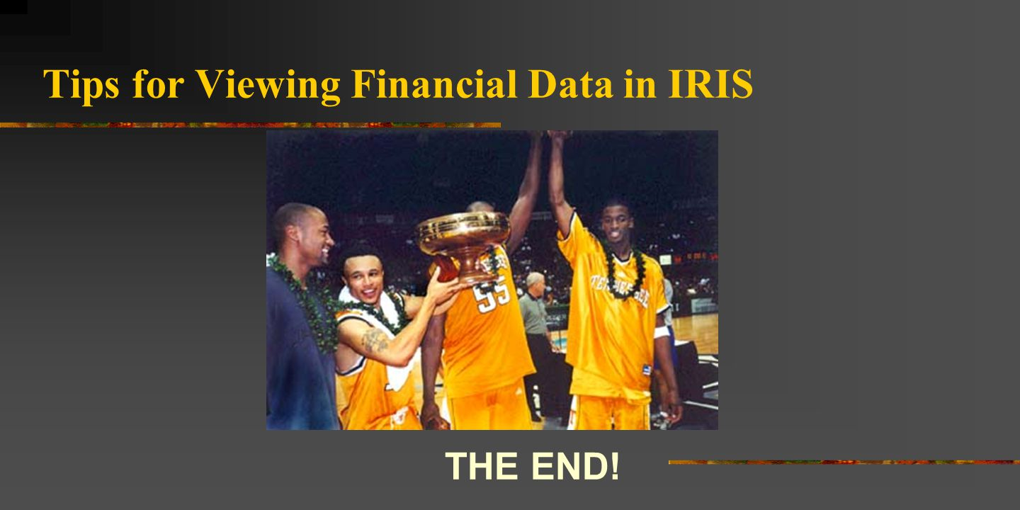 Tips for Viewing Financial Data in IRIS THE END!