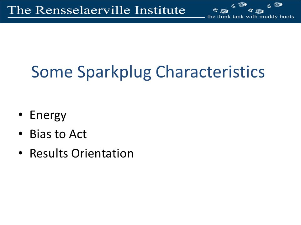 Some Sparkplug Characteristics Energy Bias to Act Results Orientation